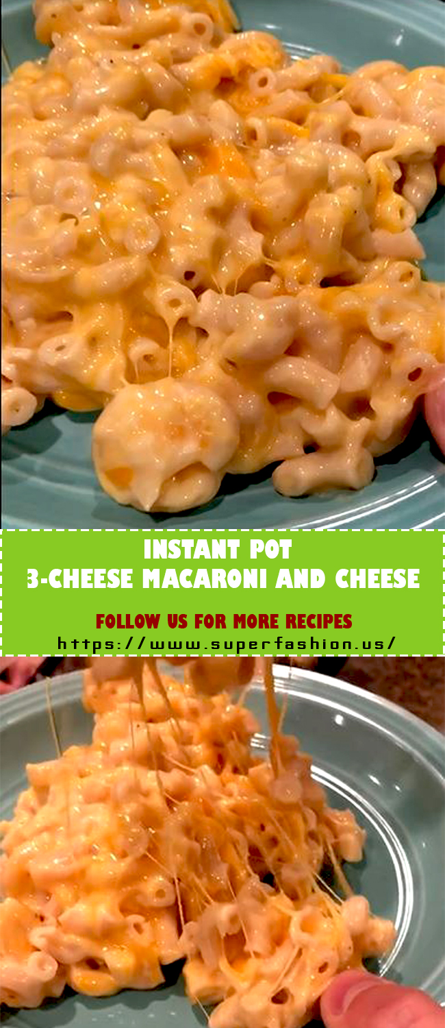 3 CHEESE MACARONI